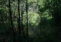 Termálne kúpele v prírode Sklené Teplice 2013